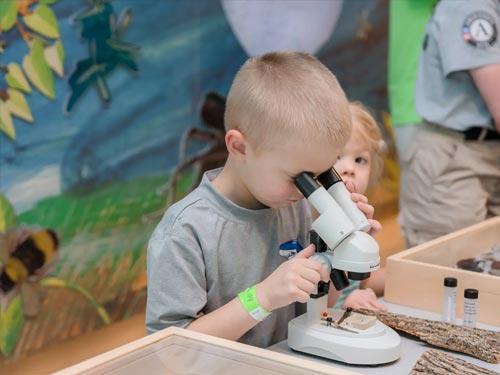 Kid looking into microscope